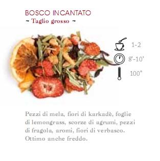 INFUSO DI FRUTTA 1 HG BOSCO INCANTATO - 100 gr.