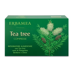 TEA TREE 30 COMPRESSE