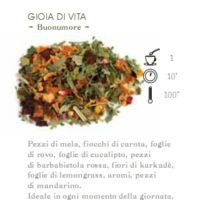 INFUSO DI FRUTTA 1 HG GIOIA DI VITA (BUONUMORE) - 100 gr.