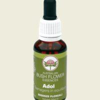 BUSH FLOWER 30 ML - ADOL
