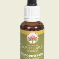 BUSH FLOWER 30 ML - CONCENTRATION