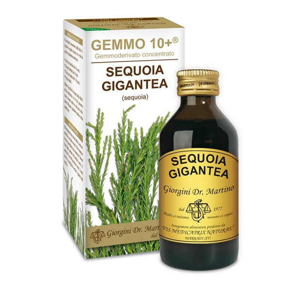 GEMMO 10+ SEQUOIA 100 ML ANALCOLICO