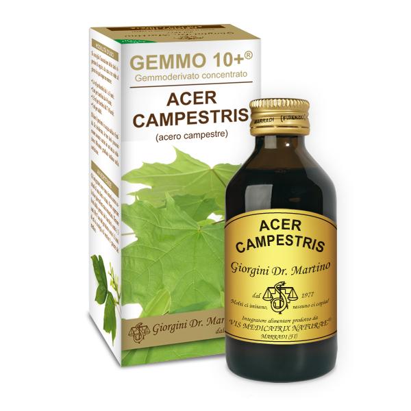 GEMMO 10+ ACERO CAMPESTRE 100ML ANALCOLI