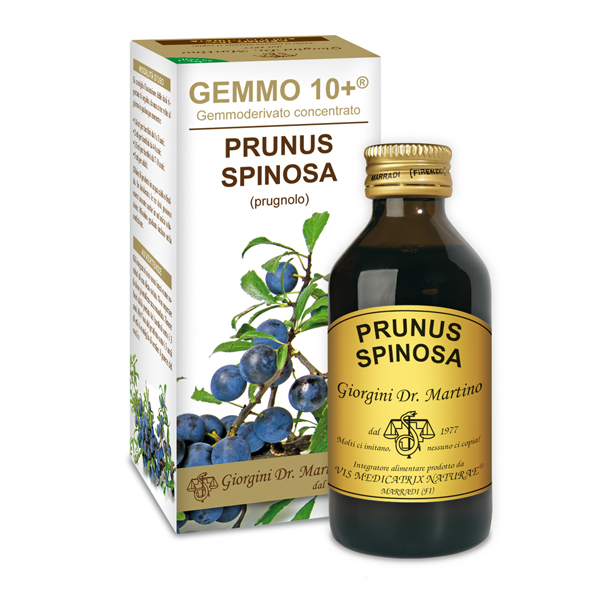 GEMMO 10+ PRUGNOLO 100 ML ANALCOLICO