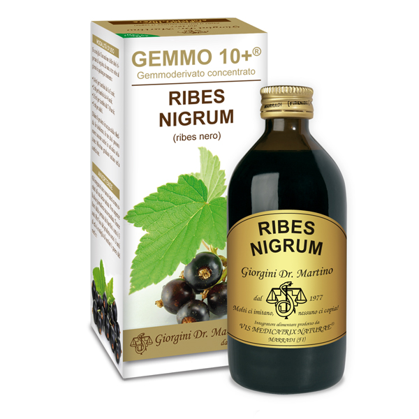 GEMMO 10+ RIBES NERO 200 ML ANALCOLICO