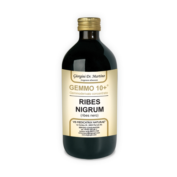GEMMO 10+ RIBES NERO 500 ML ANALCOLICO