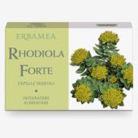 Rodiola Forte (Rhodiola rosea) - Erbamea